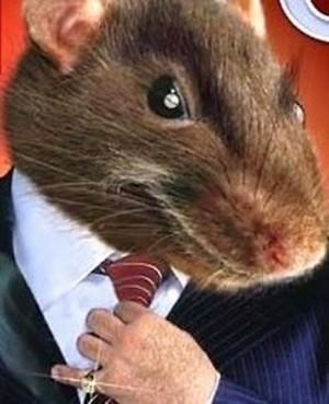 'Grupinho' de ratos engravatados podem faturar no governo