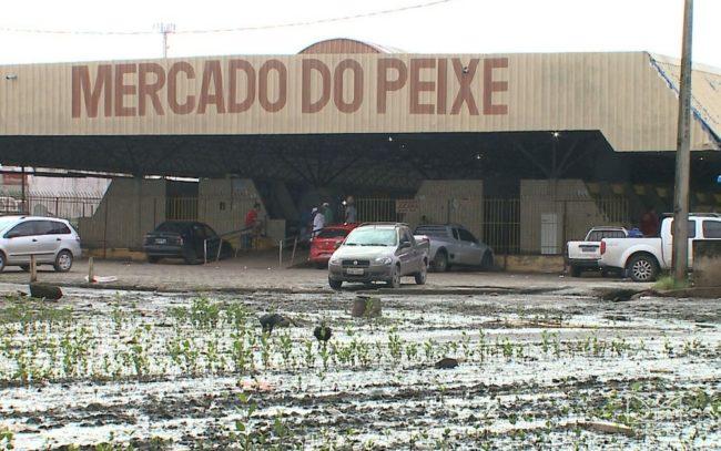 Mercado do Peixe em São Luís (MA)