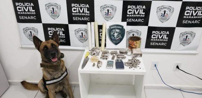 Cão farejador encontrou as drogas em área de matagal