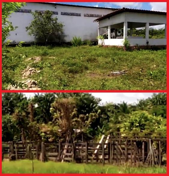 A primeira imagem mostra o matadouro sem o cercado de madeira onde o boi ficava na espera para o abate; a segunda imagem mostra toda a madeira do matadouro na propriedade do ex-vereador