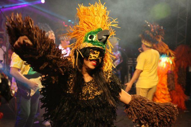 Blocão do Bicho faz parte do Carnaval de São Luís