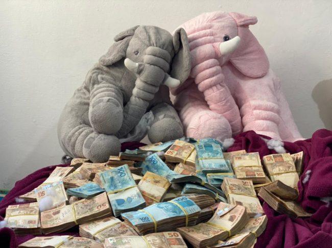 Operação Anadromiki da PF encontra grande volume de dinheiro em ursos de pelúcia